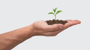 Skalbarhet - förmågan att växa